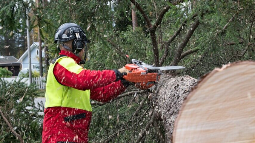 Oulun Arboristipalvelu Oy